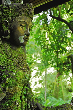 Mossy balinese figure, Ubud, Central Bali, Indonesia
