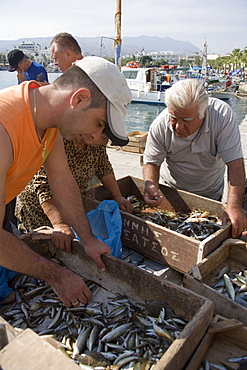 People sorting fishing at Madraki harbour, Kos-Town, Kos, Greece