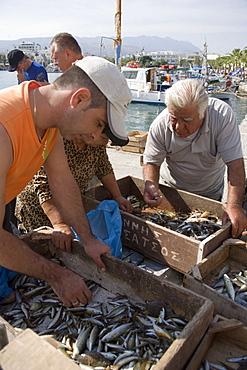 People sorting fishing at Madraki harbour, Kos-Town, Kos, Greece