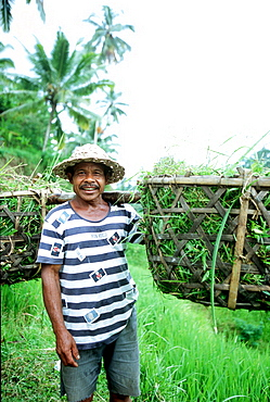 farmer in bali, rice, indonesia