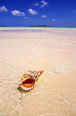 South pacific, Cook Islands, Aitutaki lagoon, One foot Island, dream beach, cristal clear water