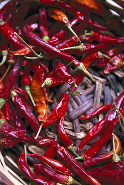 Dried chili peppers in a basket, Finca Monaber Vell, Majorca, Spain, Europe