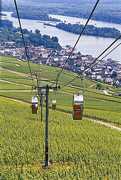 View at chair lift above idyllic landscape, Rudesheim, Rheingau, Hesse, Germany, Europe