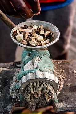 Preparation of kava, malekula, Vanuatu, South Pacific, Oceania