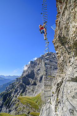 Woman climbs on overhanging ladder on adventure via ferrata Gemmi, Gemmi, Bernese Alps, Valais, Switzerland