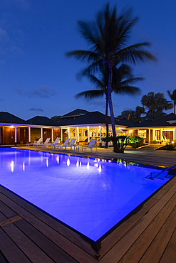 Nightshot of illuminated, blue pool, with blue-night sky and palm tree, St. Barths.