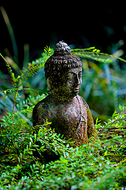 A stone carved Bhudda statue, set in a verdant green garden. Bali, Indonesia.