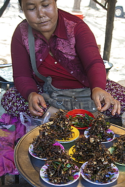 Small fried frogs for sale in the market, Oudong (Udong), Kampong Speu, Cambodia, Asia