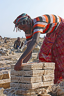Ethiopia; Afar region; Danakil Desert; Danakil Depression; Workers on the salt pans; loosening and processing the salt plates in laborious manual work; rectangular salt plates are tied into packages