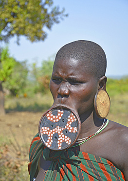 Ethiopia; Southern Nations Region; Mago National Park; lower Omo River; Mursi woman with lip plate and earrings;