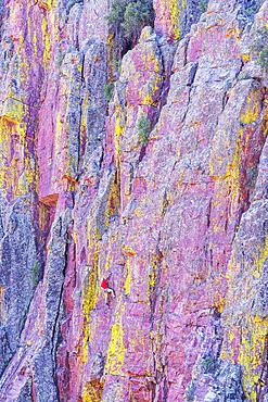 Man rock climbing, Oak Creek Canyon, Arizona, USA, North America