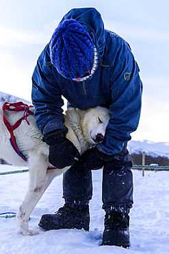Cuddling with the dogs after a dog sledding tour at Indset, Björn Klauer's husky farm, Bardufoss, Norway