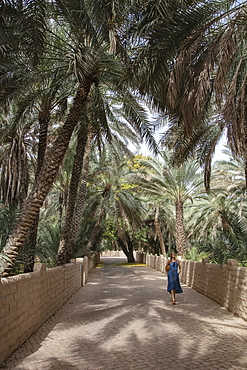 Young woman runs along a date palm lined path in the Al Ain Oasis, Al Ain, Abu Dhabi, United Arab Emirates, Middle East