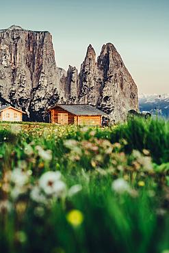 Sunrise on the Schlern, Seiser Alm, South Tyrol, Italy, Europe