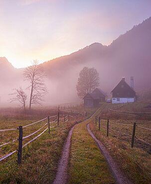 Sunrise, fog, farm, Buchauer Saddle, Ennstal Alps, Austria