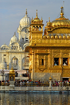 Golden Temple gleaming in the sunlight, Sikh holy place, Amritsar, Punjab, India, Asia