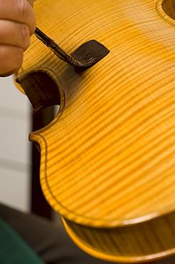 Primo Pistoni making a violin in his workshop, Applying varnish, Violin Maker, Cremona, Lombardy, Italy