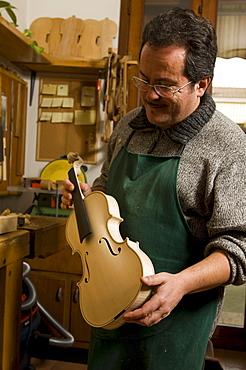 Primo Pistono making a violin in his workshop, Violin Maker, Cremona, Lombardy, Italy