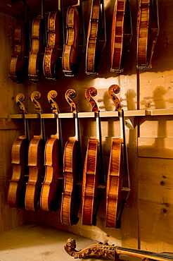Close up of violins, Workshop of Bruce Carlson, Violin Makers, Cremona, Lombardy, Italy