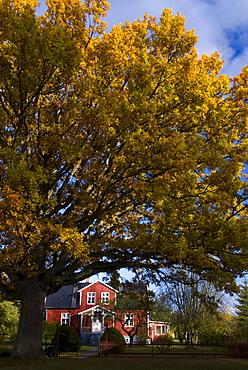 House in Gotland, Sweden, Scandinavia, Europe