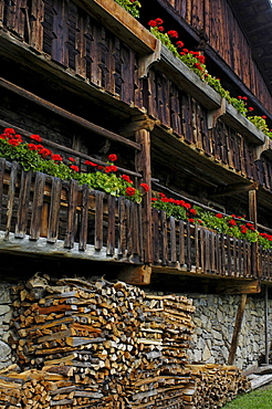Balcony with geraniums, Farmhouse in the South Tyrolean local history museum at Dietenheim, Puster Valley, South Tyrol, Italy
