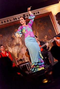 Woman dancing flamenco in the flamenco restaurant Corral de la Maoreira, Madrid, Spain