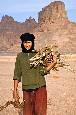 tuareg collecting firewood, Akakus mountains, Libya, Sahara, North Africa