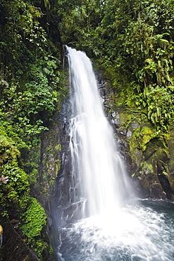 La Paz waterfalls, rainforest, Costa Rica, Central America