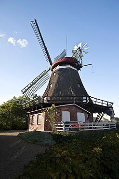 Dutch windmill, Lindau, Boren, Schlei, Schleswig-Holstein, Germany