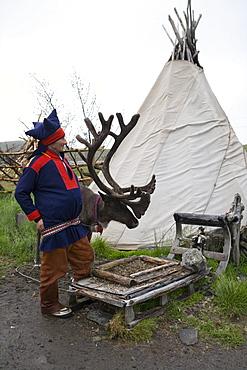 Sami Native Nils in Traditional Costume, near Honningsvag, Mageroya, Finnmark, Norway, Europe