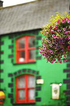Colorful buidling and flowers in Macroom, Macroom, County Cork, Ireland