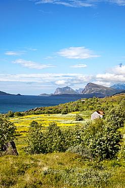 Nappstraumen, Vestvagoya island, Lofoten Islands, North Norway, Norway