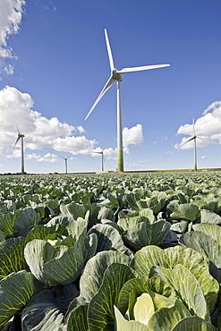 Wind turbines, Dithmarschen, Schleswig-Holstein, Germany