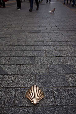 Scallop on the ground at the pedestrian area, Leon, Province of Leon, Old Castile, Castile-Leon, Castilla y Leon, Northern Spain, Spain, Europe