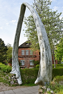 Whale Jaw Bone as entrance to the main house in the Museum, Carl-Haeberlin-Friesenmuseum, Wyk, North Sea Island Foehr, Schleswig-Holstein, Germany