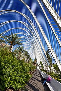 The Umbracle, landscaped walk with plant species indigenous to Valencia in Cuidad de las Artes y las Ciencias, City of Arts and Sciences, Santiago Calatrava (architect), Valencia, Spain