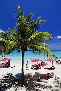 Palm trees and people on the beach in the sunlight, Pereybere, Mauritius, Africa