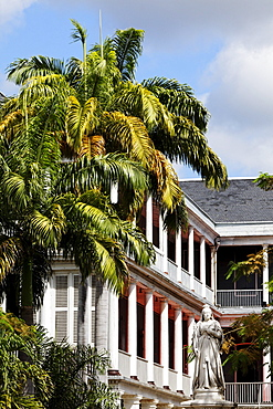 Palm trees and statue at Government House, Port Louis, Mauritius, Africa