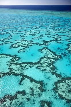 Coral around Heron Island from above, Great Barrier Reef Marine Park, UNESCO World Heritage Site, Queensland, Australia