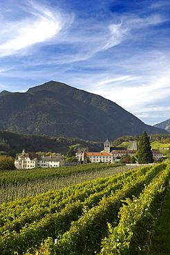 Vineyard and monastery under clouded sky, Vahrn, Brixen, Alto Adige, South Tyrol, Italy, Europe