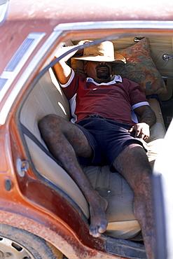 Boxer Lizard sleeping on backseat, Fred Brophy's Boxing Troupe, Simpson Desert, Queensland, Australia
