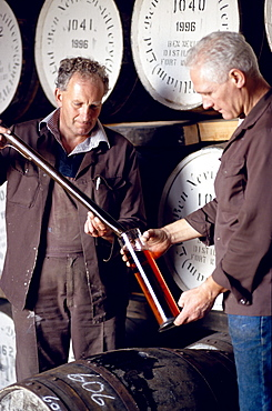 Two men testing whiskey at Ben Nevis distillery, Fort William, Invernesshire, Scotland, Great Britain, Europe