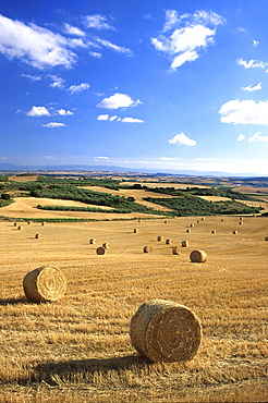 Rolling landscape and wheat fields near Tafalla, near Pamplona, Navarra, Spain