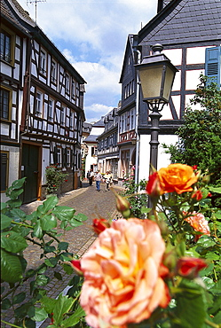 Half timbered houses and roses at the old town, Eltville, Rheingau, Hesse, Germany, Europe