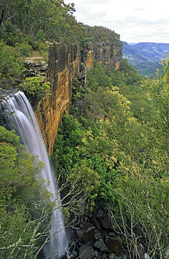 Waterfall in the Morton National Park, Fitzroy Falls, Morton National Park, Southern Highlands, New South Wales, Australia