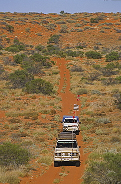 Convoy of 4WD in red sand dunes, travelling along the French Line, Simpson Desert, Queensland, Australia