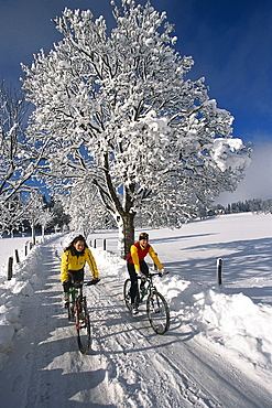 Two women riding bicycles on snow covered road, Ramsau, Styria, Austria, Europe