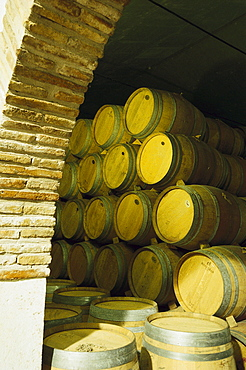 View at barrels at a wine cellar, Bodega Vinicola di Navarra, Spain, Europe