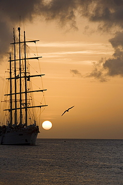 Star Clipper at Sunset, Le Bourg, Terre-de-Haut Island, Ile des Saintes, Guadeloupe