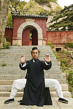 Taoist monk Zhang Qingren demonstrating Tai Chi, Hou Shi Wu Temple, Mount Tai, Tai Shan, Shandong province, World Heritage, UNESCO, China